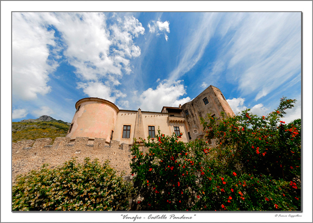 Castello e rose